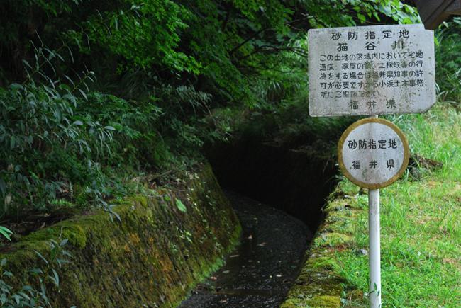 kumakawa13.jpg