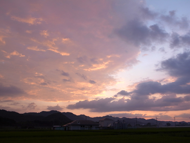 kumokumo4.jpg