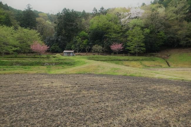 tsuchinoka5.jpg