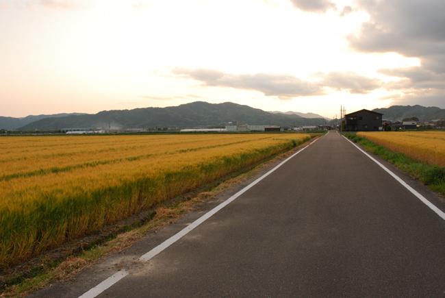 yuumugiumaj8.jpg