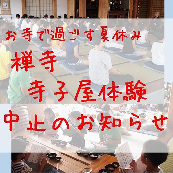 600寺子屋体験 チラシ 令和元年 令和2年 夏休み