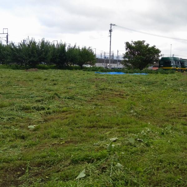 600草刈り200720