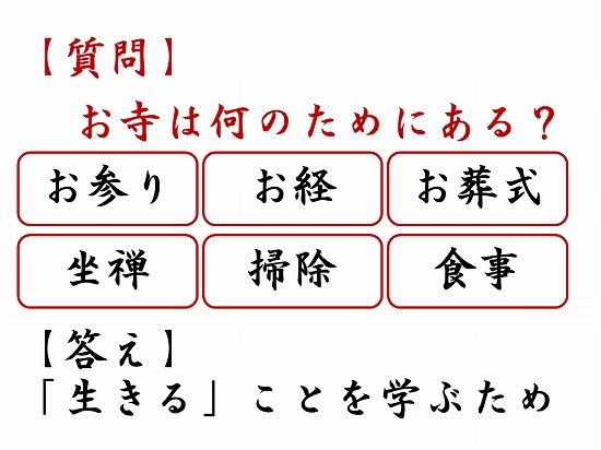 550オンライン坐禅会 法話 子供向け お寺って何ですか?3