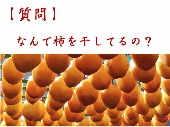 160オンライン坐禅会 法話 子供向け 渋柿1