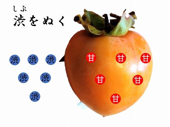 160オンライン坐禅会 法話 子供向け 渋柿5