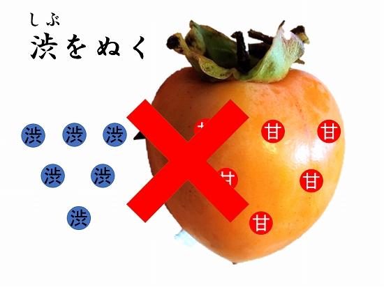 160オンライン坐禅会 法話 子供向け 渋柿6