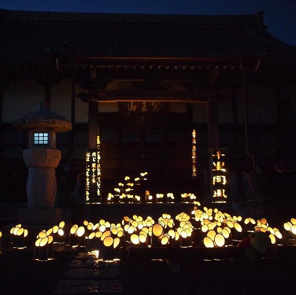 600竹灯り201231 13 (2)