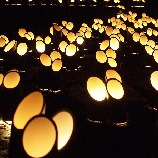 600竹灯り201231 15 (2)