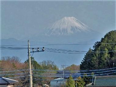21富士山0409