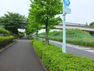 3尾根幹線道路0523