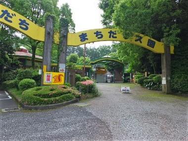 7町田リス園0523