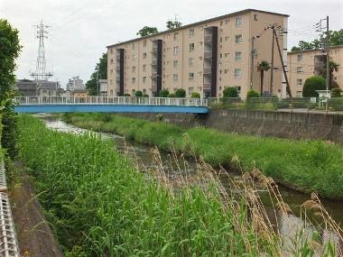 10境川0523