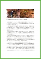 web05-oosugi-EPSON076.jpg