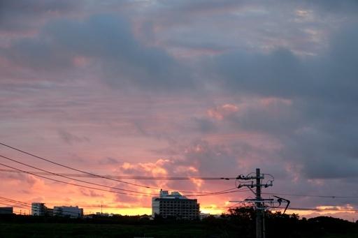朝焼けb,5-25,6-03 DSC00469
