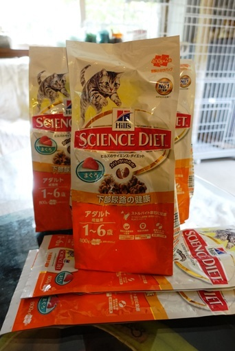 百円a DSC00514