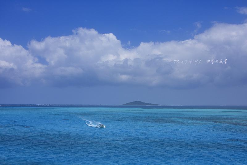 石垣島 6