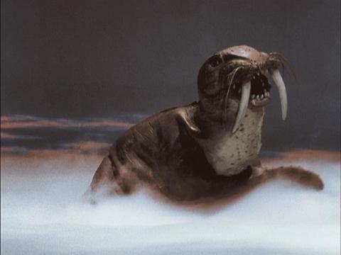 四次元怪獣 トドラ