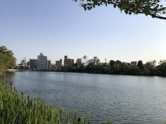 洗足池公園_2