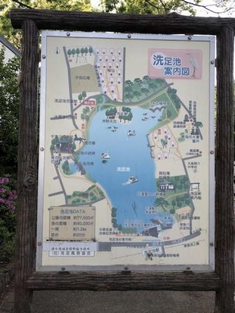 洗足池公園_12