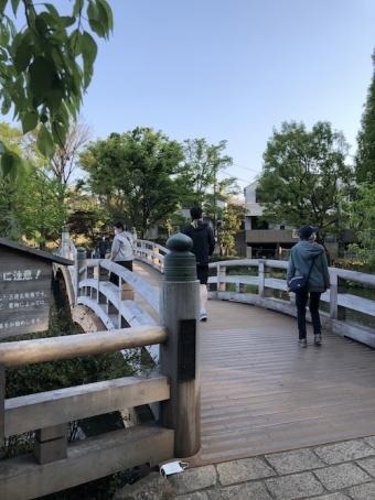 洗足池公園_15