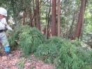 200322_006.jpg
