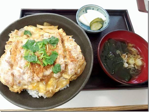 TATSUNAMI (4)