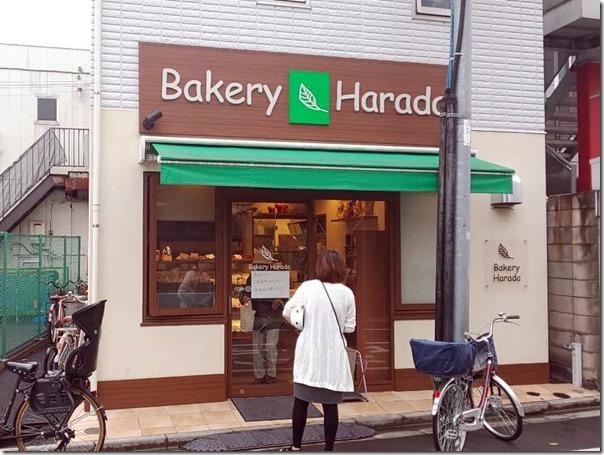 harada (2)