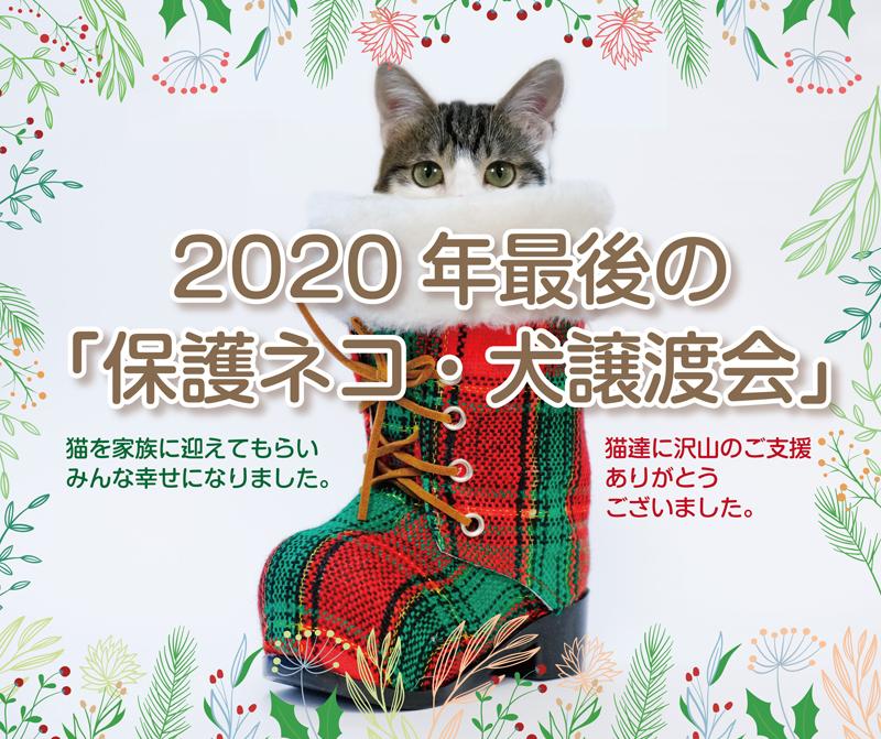 2020_12_23.jpg