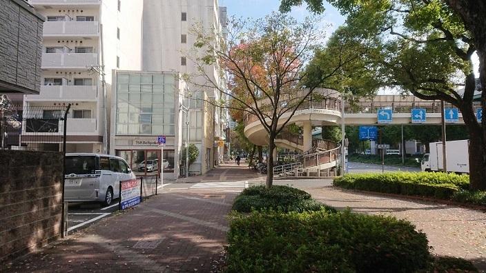 20201112名古屋ピートニック (1)