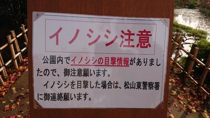 20201120道後温泉足湯 (7)