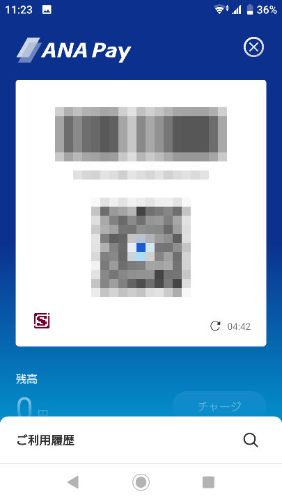 202012ANAPay (4)