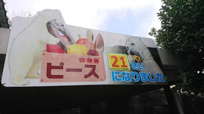202103愛娘ちゃん初めての砥部動物園 (11)