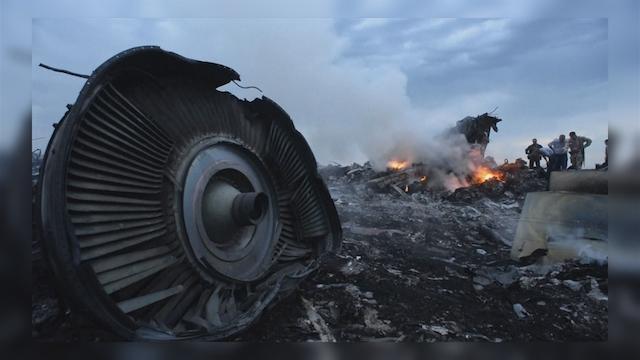 2014年7月ウクライナでのマレーシア航空機撃墜事件2014年7月ウクライナでのマレーシア航空機撃墜事件〔PHOTO〕NHK